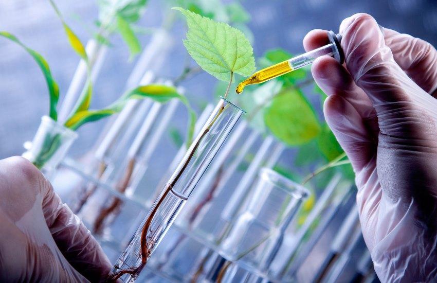 L'Italia riparte dal biotech